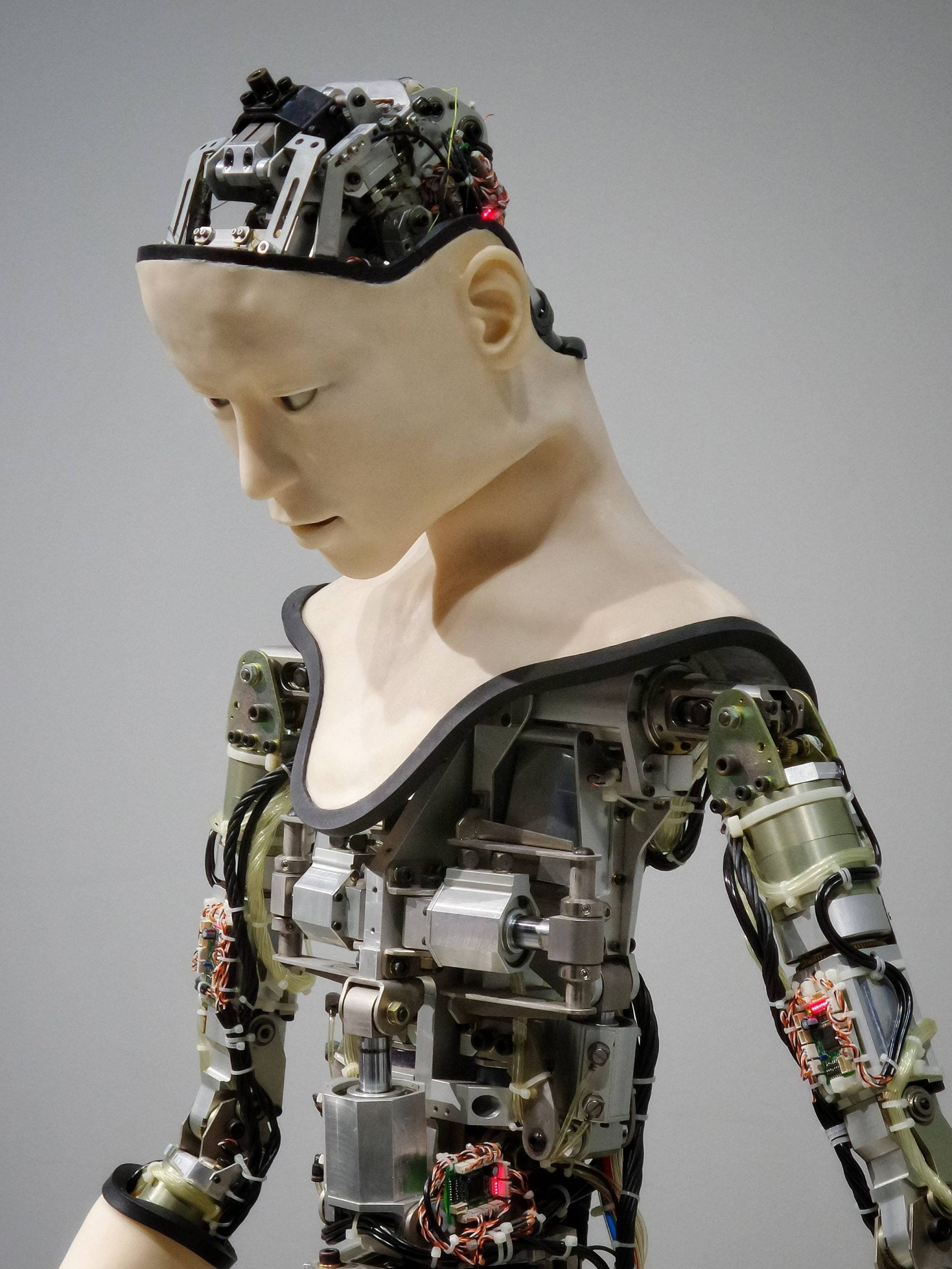 Integrated Robotic Solution